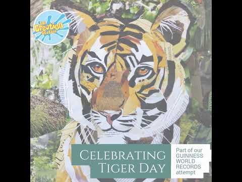 Celebrating Tiger Day