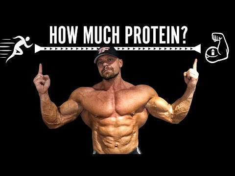 How Much Protein Do You Need When Cutting? | Tiger Fitness