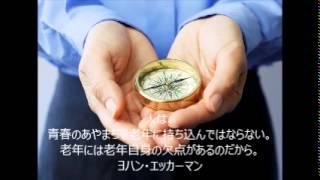 キャッチフレーズに使える名言集~鈴木裕喜デザインアートoffice編 「人...