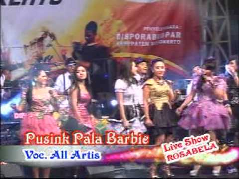 om rosabellla- pusing pala barbie all artiz