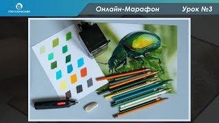 Цветные карандаши  Урок №3