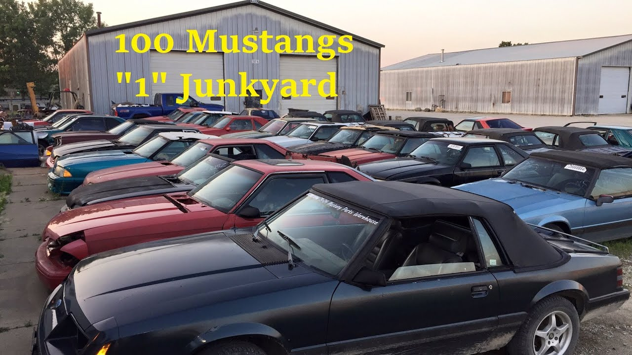 Encorempw Used Ford Mustang Parts Website Warehouse Salvage Junkyard Inventory Tour