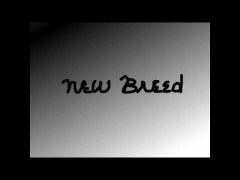 Expectation-NEW BREED