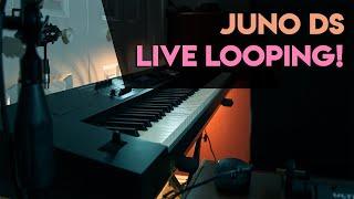 Roland Juno DS - Synthwave Looper Jam