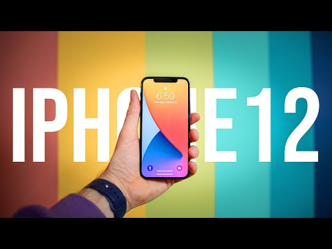 iPhone 12: A Photographer's Review
