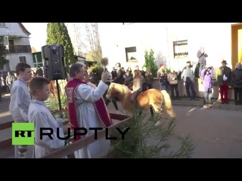 Germany: Traditional horse parade hits rural Germany for St. Stephen's day