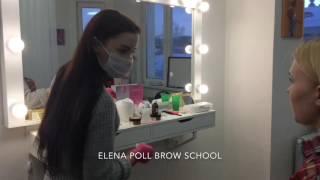 Курс по бровям Elena Poll