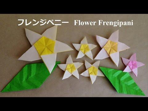 クリスマス 折り紙 折り紙 花 立体 折り方 簡単 : popmatx.com