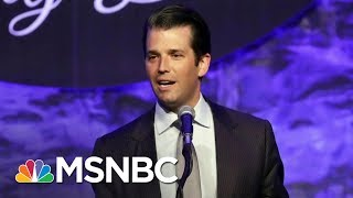 What Everyone Missed In The Donald Trump Jr. Emails | All In | MSNBC
