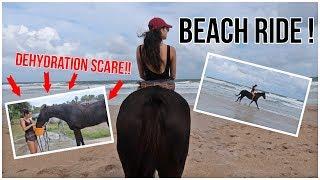 My Horse Got Dehydrated | Horseback Riding On The Beach!