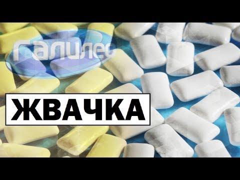 Галилео   Жвачка 👄 [Chewing Gum]