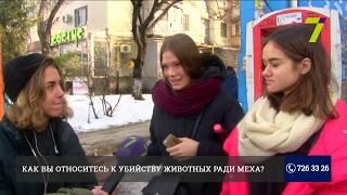 В Одессе состоится всеукраинский марш против изделий из натурального меха