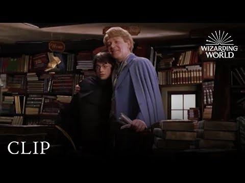 Gilderoy Lockhart | Harry Potter and the Chamber of Secrets