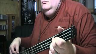 Dennis DeYoung Desert Moon Bass Cover