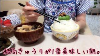 【お弁当、朝ご飯】結局きゅうりが1番美味しい朝。
