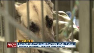 German Shepherd Thrown Over Oklahoma City Bridge