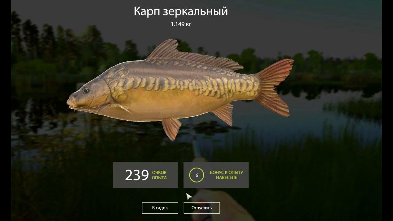 Русская рыбалка 4. Озеро Медвежье.