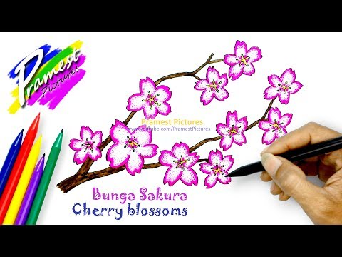 How To Draw Cherry Blossoms | Flower Coloring Pages For Kids