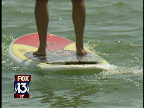 Standup Paddleboards in Tampa Bay