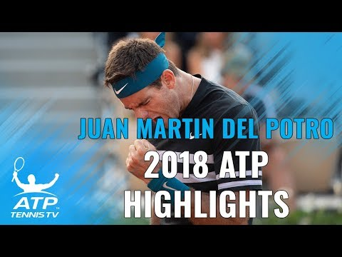 JUAN MARTIN DEL POTRO: 2018 ATP Highlight Reel