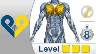 Brustmuskeltraining Niveau 3 - ohne Musik