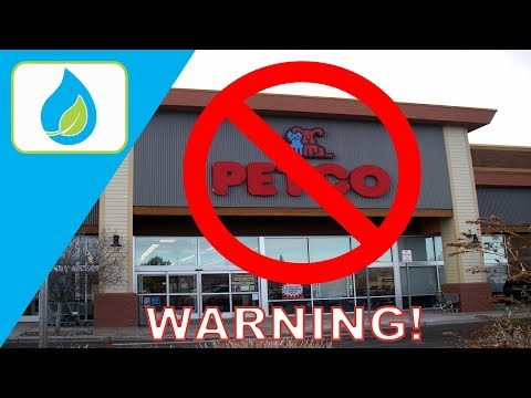 PETCO AQUARIUM PLANTS YOU SHOULDN'T BUY!