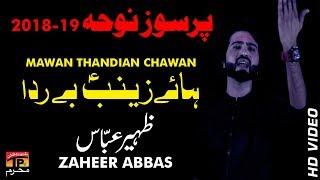 Sadd Qaidi Purey || Zaheer Abaas || New Noha || TP Moharram