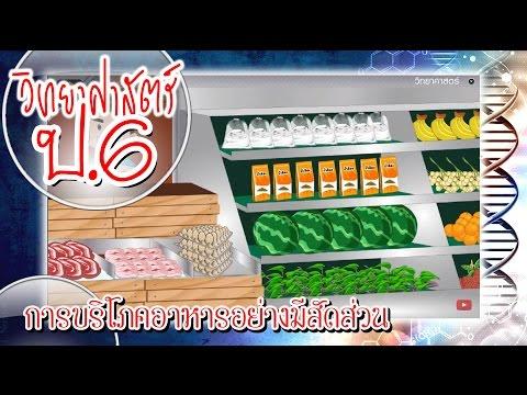 การบริโภคอาหารอย่างมีสัดส่วน - วิทยาศาสตร์ ป.6