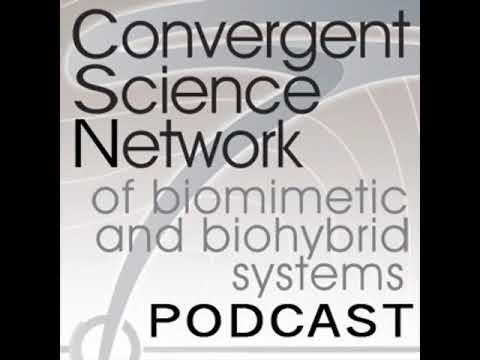Joscha Bach – Convergent Science Network Podcast (2018)