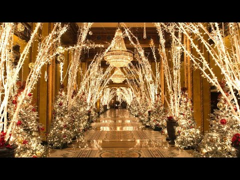 THE ROOSEVELT HOTEL CHRISTMAS LOBBY DISPLAY | NEW ORLEANS