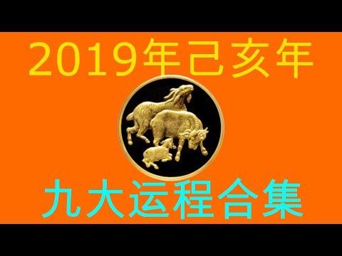 2019年己亥年九大运程大合集:肖羊者
