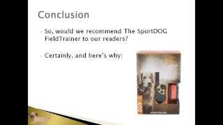 Pet Products Online | Sportdog 400 Field Trainer Review Article | Dog Training Collar