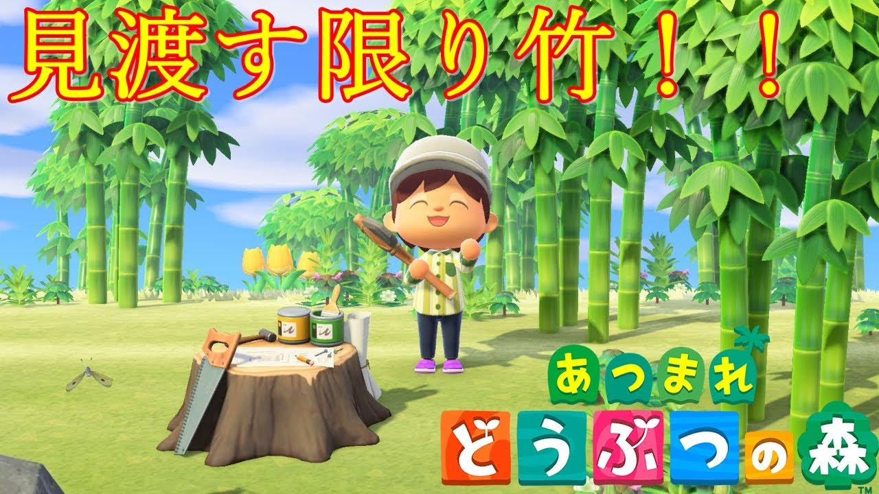 あつ森 竹の離島