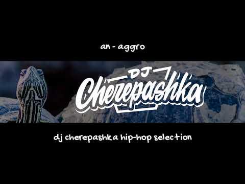 An - Aggro (dj Cherepashka Training Version)