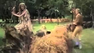 Wie Honza beinahe König geworden wäre (1977) - Deutsche Märchenfilme und Kinderfilme