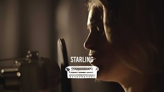 Starling - Misfit | Ont