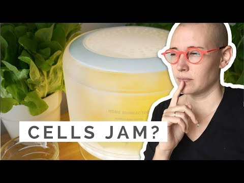 Will we be growing FRUIT CELLS at home? The Cell Pod | Food Design