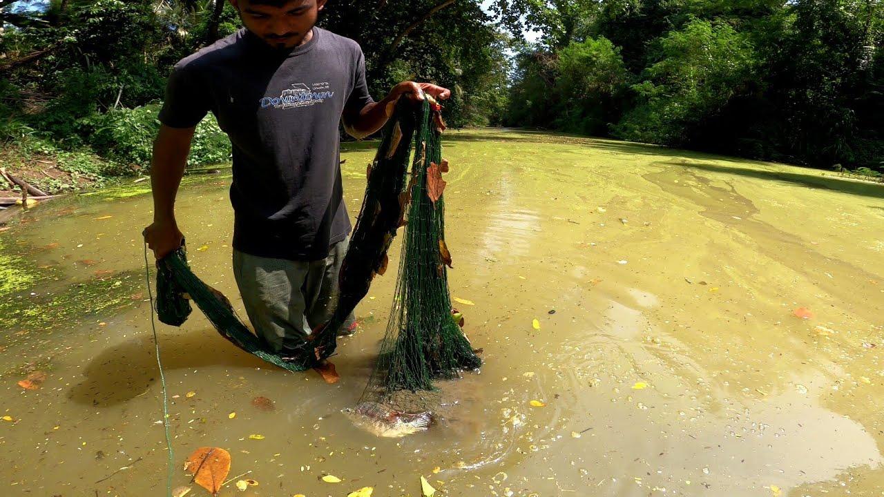 Traditional Cast Net Fishing 🇱🇰 | Fishing in River | Awesome Fishing Video | Sri Lanka