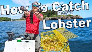 How To Catch Lobsters In Maine (I Bought A Boat Episode 3)