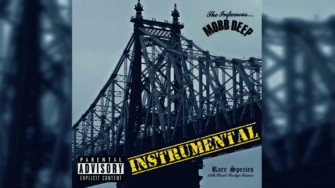 Rare Species (59th Street Bridge Remix Instrumental)