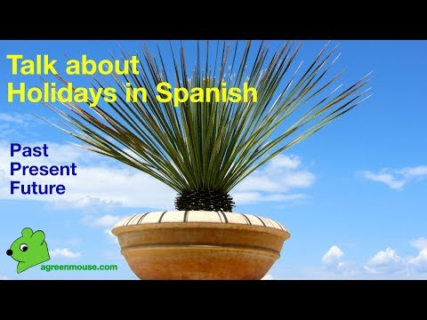 Talk about holidays in Spanish: past, present and future