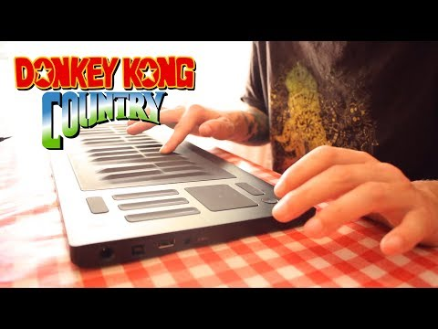 Aquatic Ambiance Cover (Donkey Kong Country)