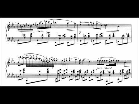 F. Chopin : Nocturne Op. 9 No. 2 In E Flat Major (Rubinstein)
