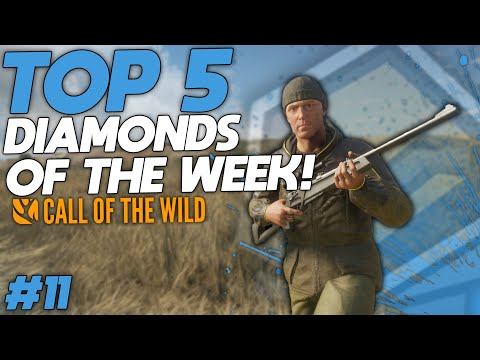 top-5-diamonds-oftw-(week-11)-|-call-of-the-wild
