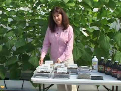 Organic Vegetable Production – Media and Fertilizer for Organic Greenhouse Production