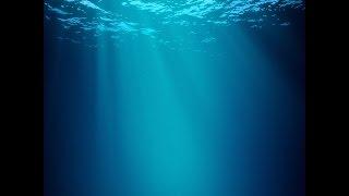 Documentaire // L'ennemi invisible le courant océanique #3 // ☆ Mystères des profondeurs ☆【FR】 thumbnail