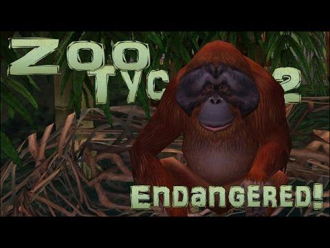 Endangered! Orangutan Jungle! - Episode #17