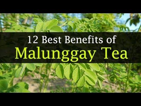 malunggay-tea-benefits---weight-loss,-diabetes,-side-effects
