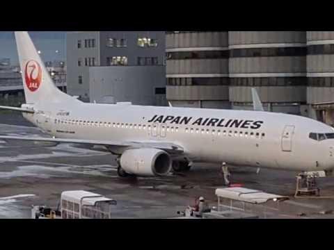 JAL JL209 - Tokyo Haneda to Nagoya - Boeing 737-800 (JA316J)
