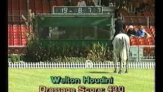 Badminton Horse Trials 1993